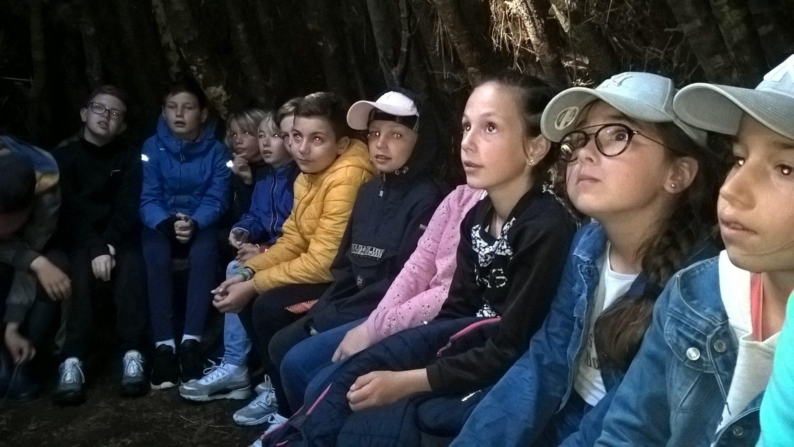Sortie dans les bois pour les CM2